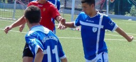 Џемал Ибиши е единствениот играч од повозрасните категории, кој успеваше да постигне голови за три младински екипи на ФК Вардар